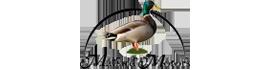 Mallard Motors, LLC